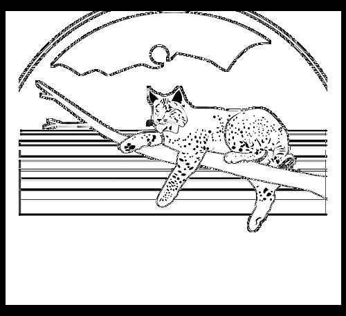 bobkat-logo-lg